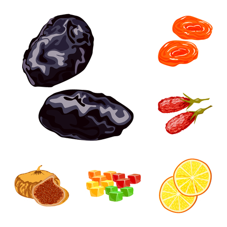 Isolated object of fruit and dried  sign. Set of fruit and food  vector icon for stock.