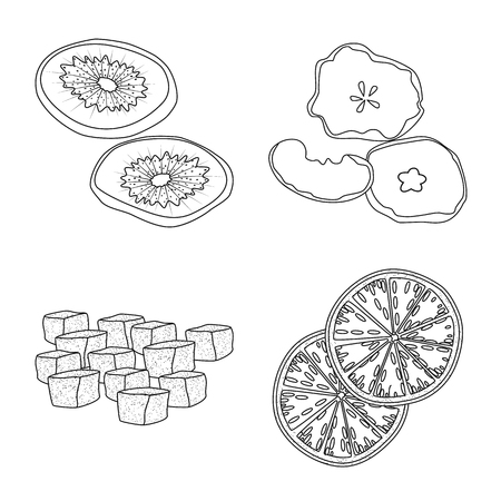 Isolated object of food  and raw  symbol. Collection of food  and nature  vector icon for stock.