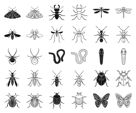 Different kinds of insects black,outline icons in set collection for design. Insect arthropod vector symbol stock web illustration.