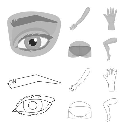 Illustration vectorielle du signe du corps et de la partie. Collection de symbole boursier du corps et de l'anatomie pour le web.