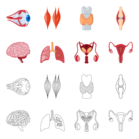 Vector illustration of biology and scientific icon. Collection of biology and laboratory stock vector illustration.