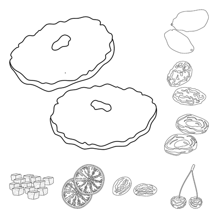 Isolated object of food  and raw  symbol. Set of food  and nature  stock symbol for web. 向量圖像