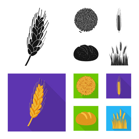 Isolated object of agriculture and farming symbol. Collection of agriculture and plant stock vector illustration.