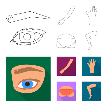 Isolated object of body and part icon. Collection of body and anatomy stock symbol for web. Illustration