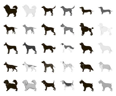 Dog breeds black,monochrome icons in set collection for design.Dog pet vector symbol stock web illustration.