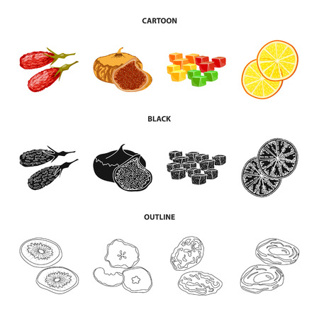 Isolated object of food and raw icon. Set of food and nature stock vector illustration.