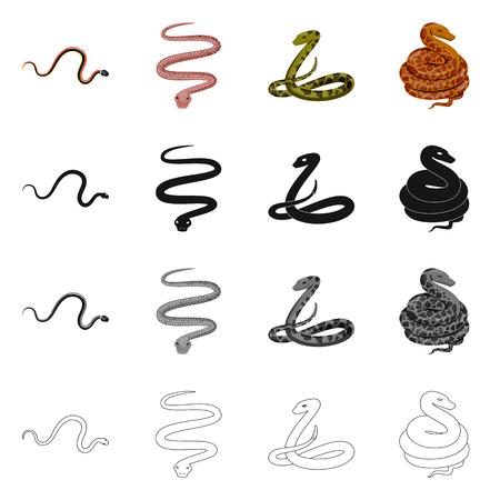 Vector illustration of mammal and danger symbol. Set of mammal and medicine stock vector illustration. 일러스트