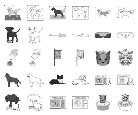 Pet monochrome,outline icons in set collection for design. Care and education vector symbol stock web illustration.