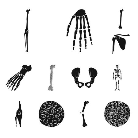 Vector design of biology and medical icon. Set of biology and skeleton stock symbol for web. Illustration