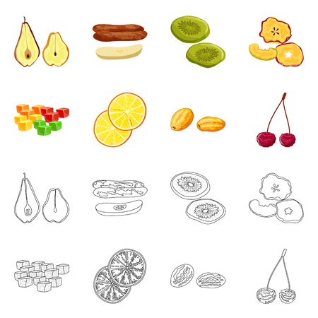 Vector illustration of food and raw symbol. Collection of food and nature stock vector illustration.