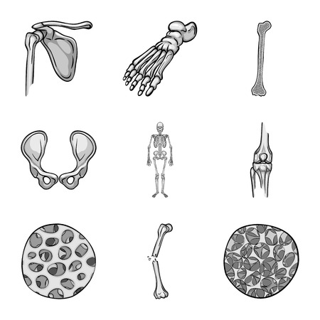 Vector illustration of biology and medical logo. Collection of biology and skeleton stock symbol for web.