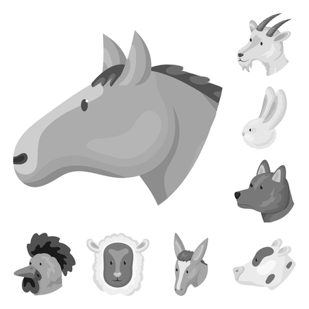 Isolated object of countryside and homestead icon. Set of countryside and breeding vector icon for stock.