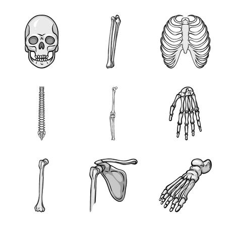 Vector illustration of biology and medical icon. Set of biology and skeleton stock vector illustration. Illustration