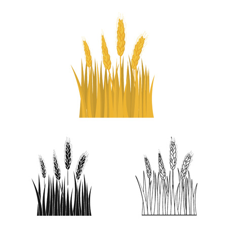Isolated object of agriculture and farming sign. Set of agriculture and plant  stock vector illustration. Illustration
