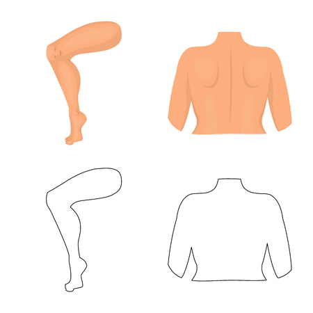 Vector design of body and part symbol. Collection of body and anatomy vector icon for stock.