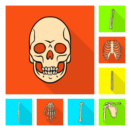 Vector illustration of bone and skeleton sign. Collection of bone and human stock vector illustration.