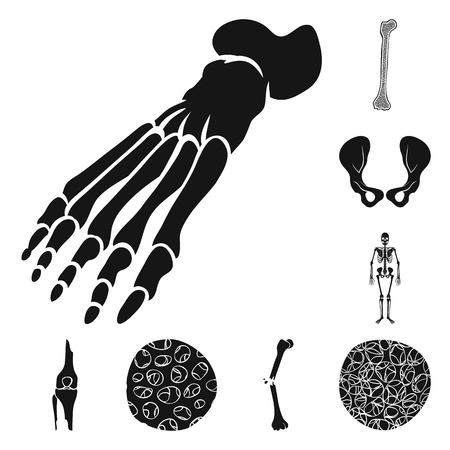 Isolated object of biology and medical icon. Collection of biology and skeleton stock symbol for web.