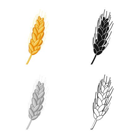 Isolated object of agriculture and farming. Collection of agriculture and plant  stock vector illustration.