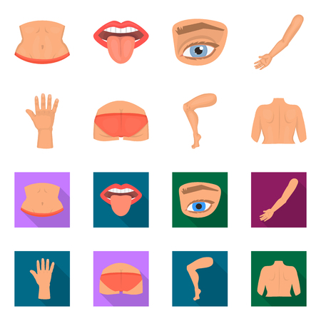 Vector design of body and part symbol. Collection of body and anatomy stock symbol for web. Vecteurs
