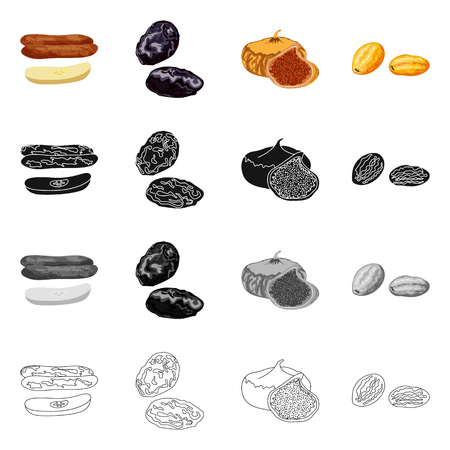 Isolated object of food  and raw. Collection of food  and nature   vector icon for stock. Illustration