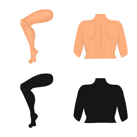Isolated object of body and part symbol. Set of body and anatomy stock symbol for web. Illustration