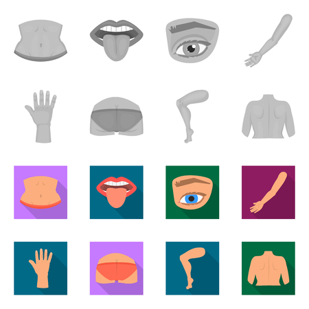 Isolated object of body and part icon. Collection of body and anatomy stock vector illustration. Illustration