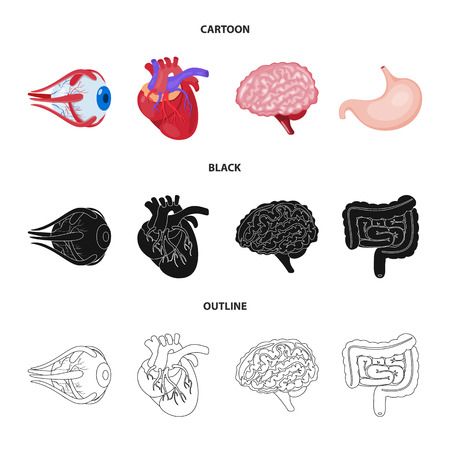 Vector illustration of biology and scientific sign. Collection of biology and laboratory stock symbol for web.