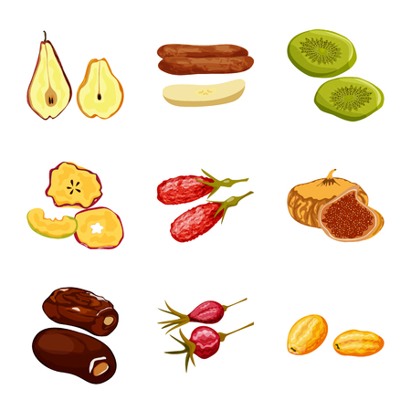 Isolated object of fruit and dried  symbol. Set of fruit and food  vector icon for stock. Illustration