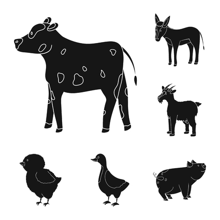 Vector illustration of ranch  and organic  symbol. Set of ranch  and food stock vector illustration.