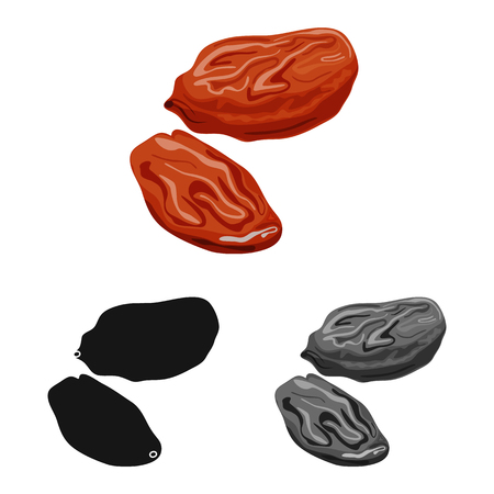 Vector illustration of raisin and dry. Collection of raisin and heap  vector icon for stock.