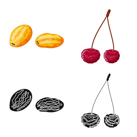 Isolated object of food  and raw  icon. Set of food  and nature   vector icon for stock. Çizim