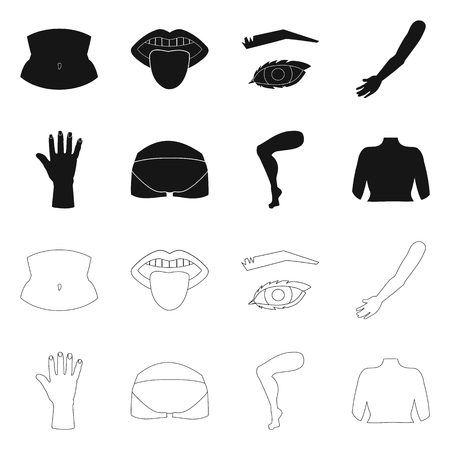 Vector illustration of body and part icon. Collection of body and anatomy stock symbol for web. Illustration