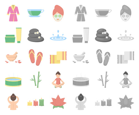 Spa salon and equipment cartoon,mono icons in set collection for design. Relaxation and rest vector symbol stock  illustration.