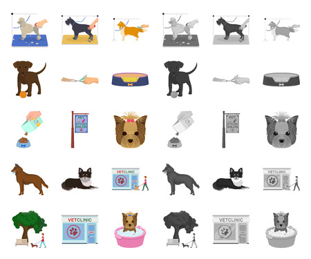 Pet cartoon,mono icons in set collection for design. Care and education vector symbol stock web illustration.