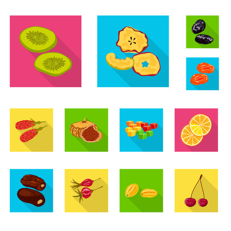 Vector illustration of fruit and dried  icon. Set of fruit and food  stock vector illustration.