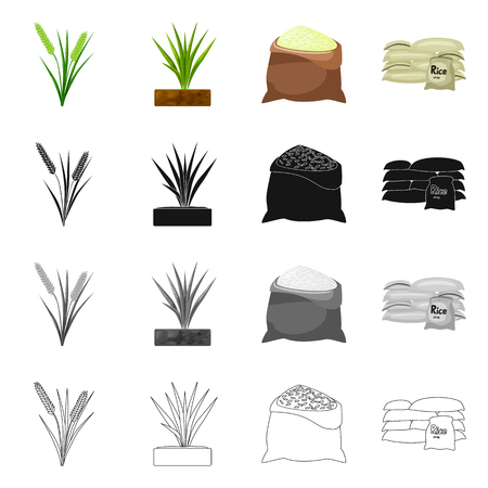 Isolated object of crop and ecological icon. Set of crop and cooking vector icon for stock.