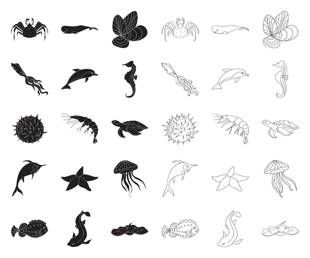 A variety of marine animals black,outline icons in set collection for design. Fish and shellfish vector symbol stock  illustration.