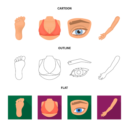 Vector illustration of body and part sign. Collection of body and anatomy stock vector illustration. Banque d'images - 119217834