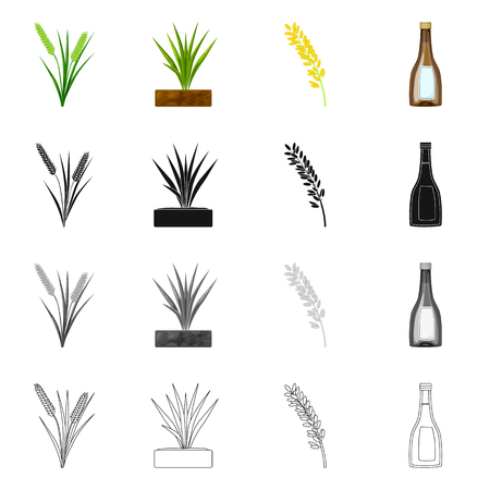 Vector design of crop and ecological. Collection of crop and cooking stock vector illustration.