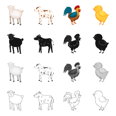 Vector illustration of breeding and kitchen. Collection of breeding and organic  vector icon for stock.