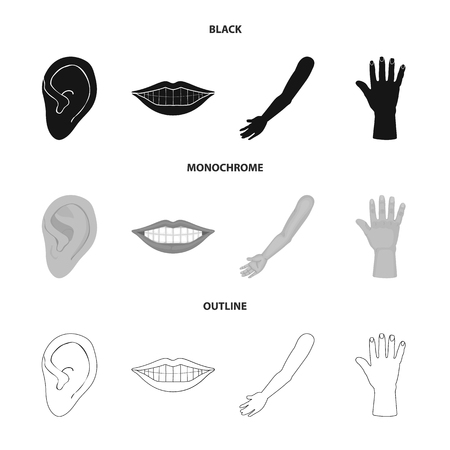 Isolated object of body and part symbol. Collection of body and anatomy vector icon for stock.