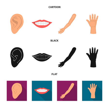 Vector illustration of body and part sign. Set of body and anatomy stock symbol for web.