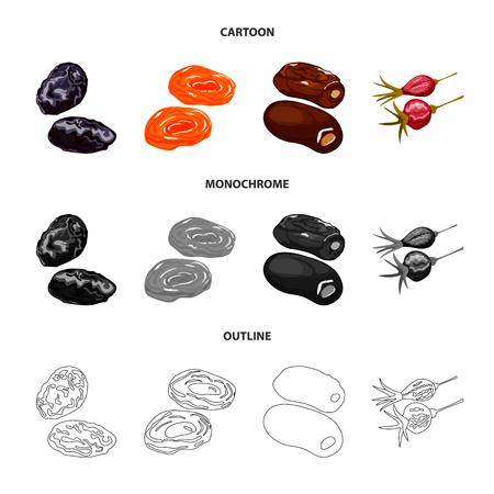 Vektor-Illustration von Lebensmitteln und rohen Symbolen. Satz Lebensmittel- und Naturvektorikone für Vorrat.