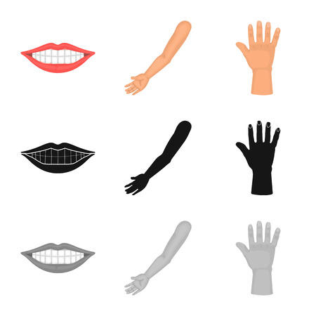 Isolated object of body and part sign. Set of body and anatomy stock vector illustration. Ilustración de vector