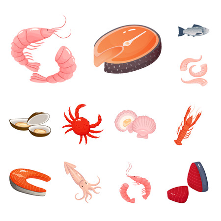 Isolated object of food and sea icon. Set of food and healthy stock symbol for web.