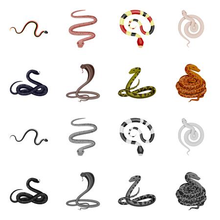 Vector illustration of mammal and danger sign. Set of mammal and medicine stock vector illustration.