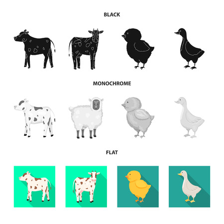 Vector illustration of breeding and kitchen  symbol. Set of breeding and organic  vector icon for stock.