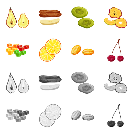 Isolated object of food and raw symbol. Set of food and nature stock vector illustration.