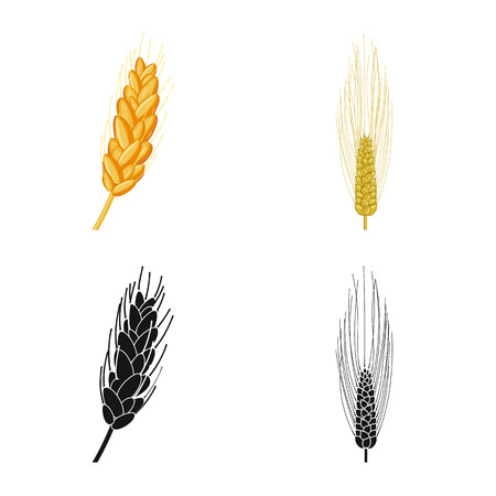Vector illustration of agriculture and farming icon. Collection of agriculture and plant  vector icon for stock. Çizim