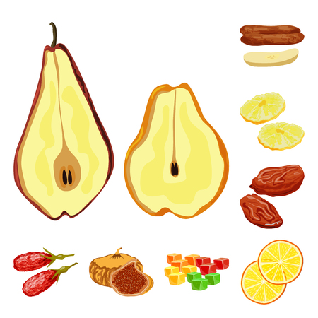 Isolated object of fruit and dried  sign. Set of fruit and food  stock vector illustration. Illustration